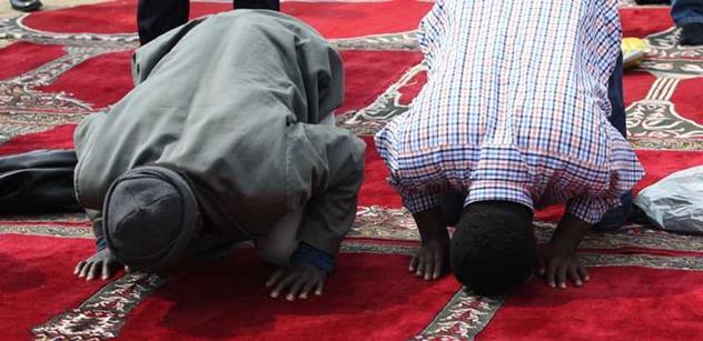 Svobodný dal dohromady hodně, hodně čísel o muslimech. Není to nic hezkého