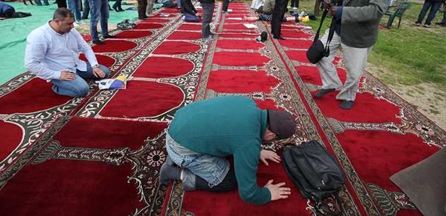 Pravicový myslitel: Muslimové nám chtějí vládnout. Budeme muset uprchlíky živit, hrozí terorismus i kriminalita. Zeman má pravdu