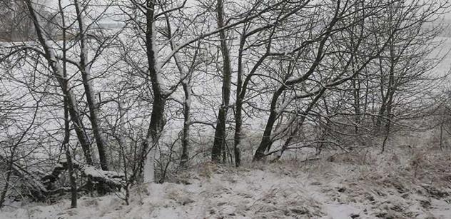 Kraj Vysočina i pro letošní zimu podpořil úpravu lyžařských běžeckých tras
