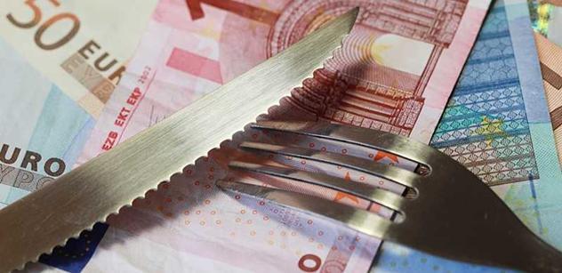 Euro není potřeba zachraňovat, míní ekonom Mertlík