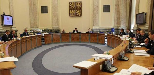 Vláda projedná výrazné snížení počtu dotačních programů