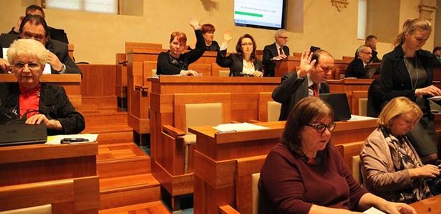 Vedení sněmovny a senátu mají řešit úpravy vztahu obou komor