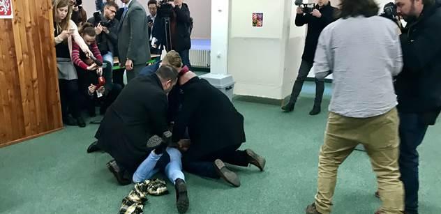 Rozbít té krávě držku! Napadení prezidenta Zemana má pokračování. TOP 09 útok pochválila