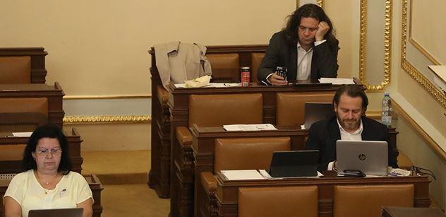 Oldřich Rambousek: Parlament je politická žvanírna, kde sedí odborníci na všechno a jsou zbyteční