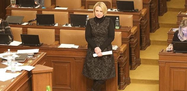 Sněmovna projedná zprávu ke sporné policejní reorganizaci