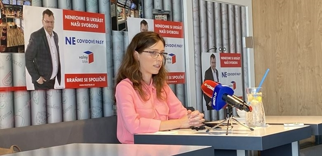 Politici a ČT. Zásadní zjištění. Hana Lipovská prozradila, co objevila po svém vstupu do Rady ČT