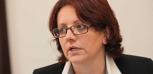 Veřejné zájmy prý čelí vyhrožování. I tak probíhá předvolební boj v Plzni