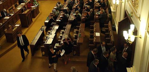 Voliči se dělí na dvě skupiny, na myslící a ty druhé, prohlásil Mitrofanov
