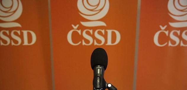 ČSSD: Na vládě se povedlo prosadit mimořádné dotace pro dětská zařízení i na boj s kůrovcem
