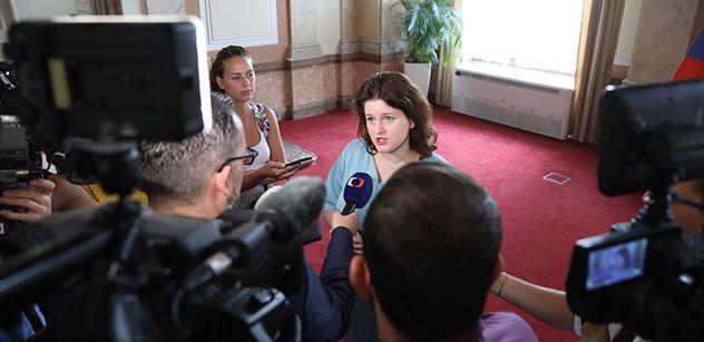 Růžena Chrasteková: Kolik komisí, rad atd, zřídí ještě ministryně Maláčová