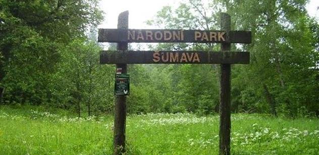 NP Šumava: Potvrzeno. Zbytky původních lesů nejsou jen na území národního parku, ale i mimo něj