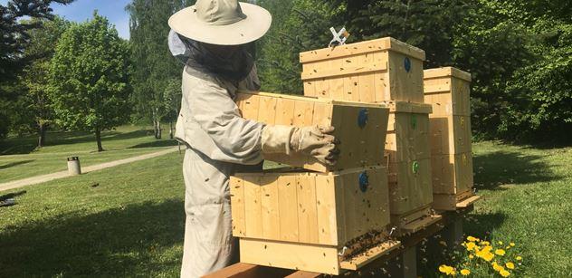 ČEZ: Temelín bude kromě elektřiny vyrábět i med