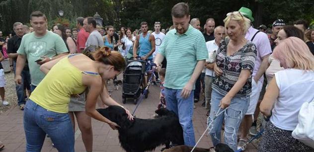 Okamura si půjčil psa a jel ho vyvenčit do Teplic před očima muslimů. Na demonstrativním pochodu pejskařů to vřelo