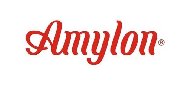 Amylon získal v soutěži Česká chuťovka 2014 prestižní ocenění pro dva ze svých výrobků