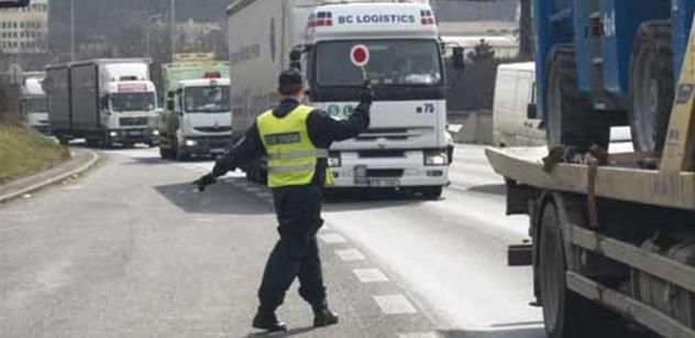 Ruzyňští celníci nepropustili zásilku 984 kg čerstvých listů Zaderahu indického
