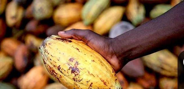 Chceme Fairtradovou Prahu. Přijďte za pěstitelkou férového kakaa a aktivistkou z Ghany
