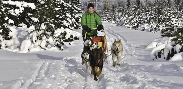 Velký okruh autodromu si mohou vyzkoušet běžkaři, oběhne ho i psí spřežení