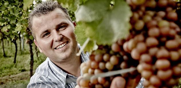 Finanční a ekonomický institut: Některé vinohrady zmrzly ze 100 procent, letošní víno má zajímavou chuť