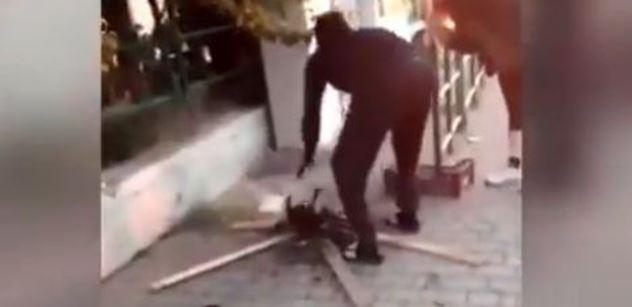 VIDEO Hnus z Itálie. Migrant opéká kočku na ulici. Prý měl hlad. Reakce policie dostala lid do varu