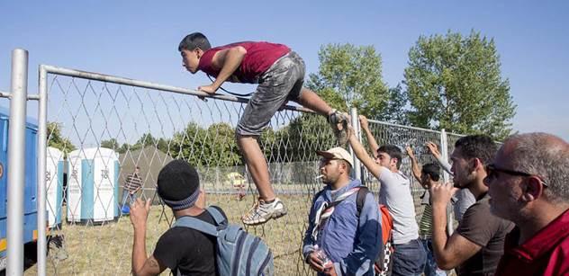 Právě teď: Slováci postřelili na hranicích uprchlici. A je zde zpráva, která by měla zajímat i nás
