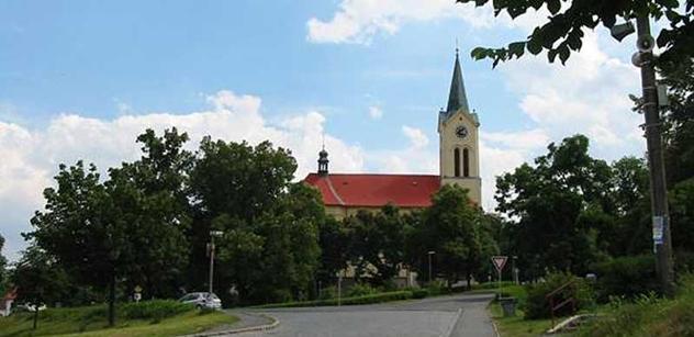Mníšek pod Brdy: V pátek bude odborně ošetřen Skalecký buk
