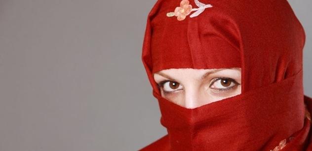 Islamisté k nám přijedou z Německa, varoval Jiří Čunek. Žena od Zelených mu vmetla něco, co je nutné vidět