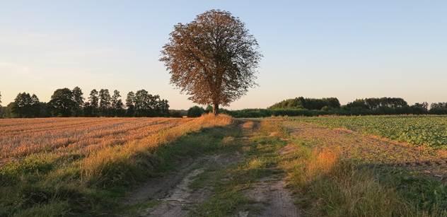 Dohra Moravce: Lži o zemědělství. Protesty v Německu, zní z Agrární komory