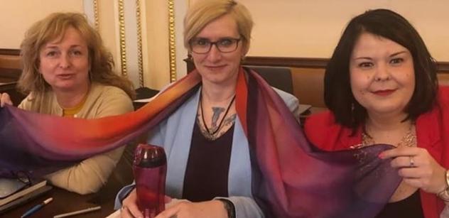 """Pedofilové! Zoofilové! Kluci menstruují! Sněmovna """"jela"""" o homosexuálech, až se Šlechtová urazila"""