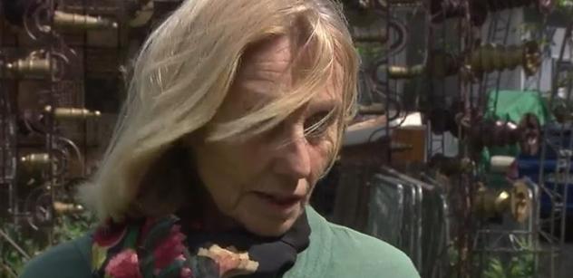 Nová poslankyně Sommerová: Ohrožená ČT. Lipovská z Institutu. Vládu drží komunisté a komunismus je rakovina