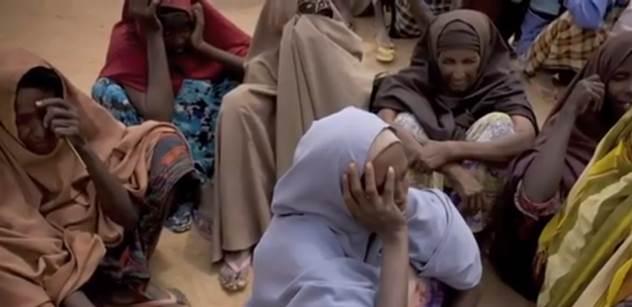 Podej uprchlíkům prst a nebude ti stačit celá ruka. Tak nejčtenější český deník varuje čtenáře