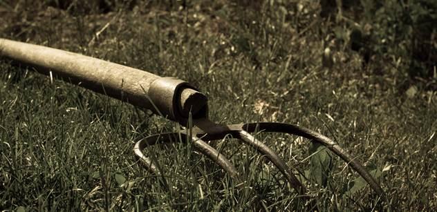 Vy chcete likvidovat metan ze zvířat? Zničíte celou přírodu. Rybička smrdí od hlavy, nastrčená Greta skončí špatně, vzkazuje zemědělec