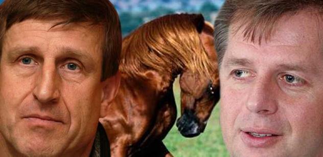 Herec Vydra má rád koně. Ministr také. Půjdou do tepláků?