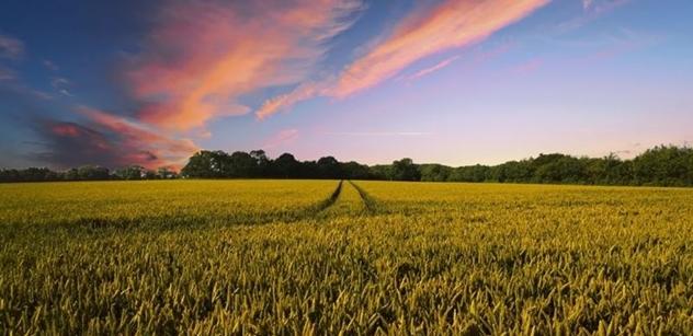 Vláda zřejmě zaujme neutrální stanovisko k vyšší ochraně půdy