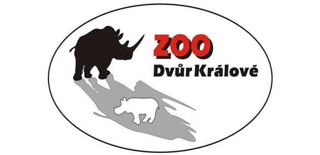 ZOO Dvůr Králové: Africký festival začíná již tuto sobotu